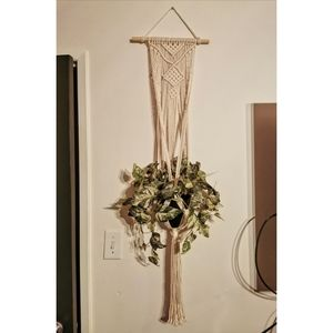 Macrame plant hanger with artificial ivy